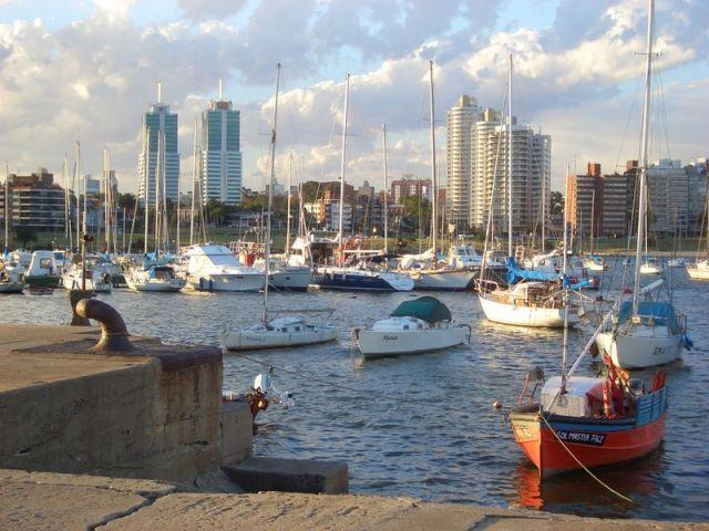 Sales, Rentals, Rentals  Montevideo Buceo